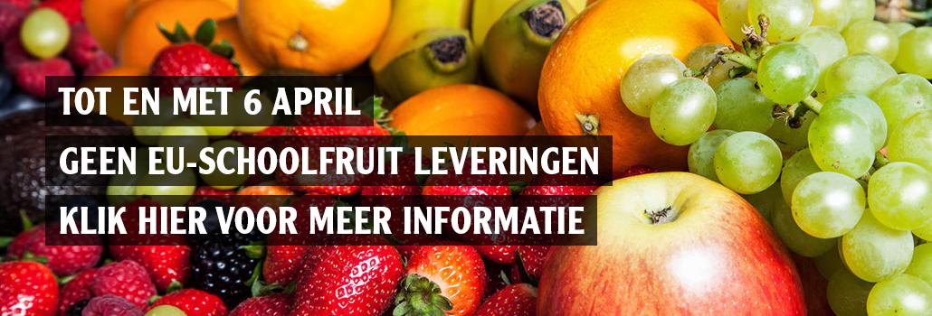 Fruit en groente voor scholen